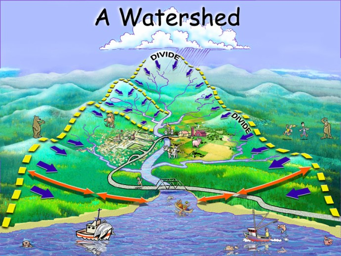 watershed_8001
