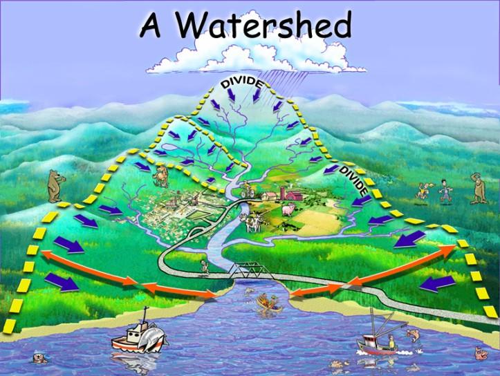 watershed_8001